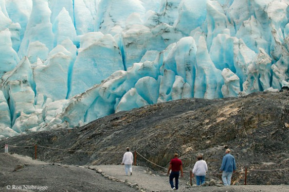 fundraiser by michele welch help us get to exit glacier