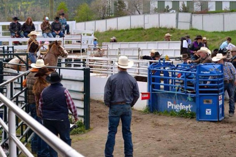 my last high school rodeo essay My last high school rodeo - free essays, term papers personal narrative, essay about myself - my last high school rodeo buy the rodeo essay paper online.