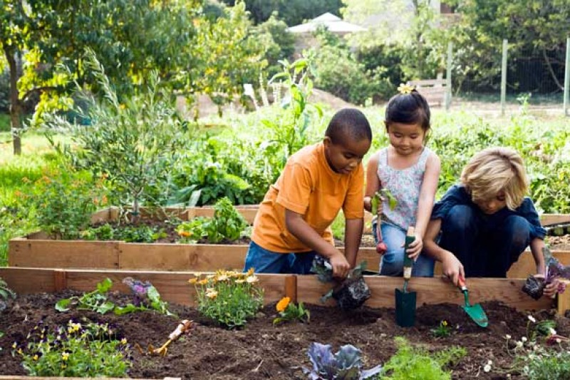 Fundraiser by leslie shioshita stolen children 39 s for Childrens gardening tools