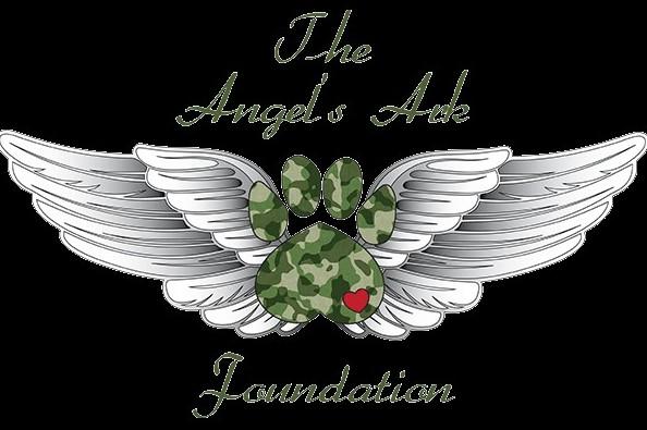 Fundraiser by Matthew Obester : Angel Ark Foundation