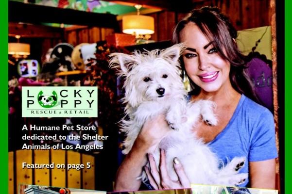 Fundraiser By Rachel Elizabeth Kennedy The Lucky Puppy Relocation Fund