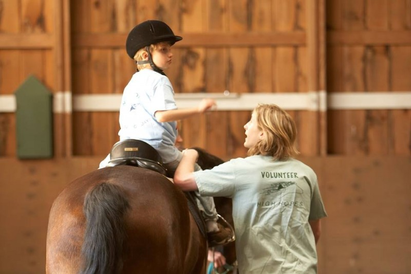 Fundraiser by Annie Hastain Turri : My Equine Therapy Certifications