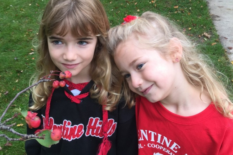 Fesselnd Fundraiser By Laura Krenik Potosky Christopher : Valentine Hills PTA  SnackPack Fund