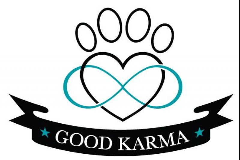 Fundraiser By Lisa Romano Adamek Good Karma Dog Rescue