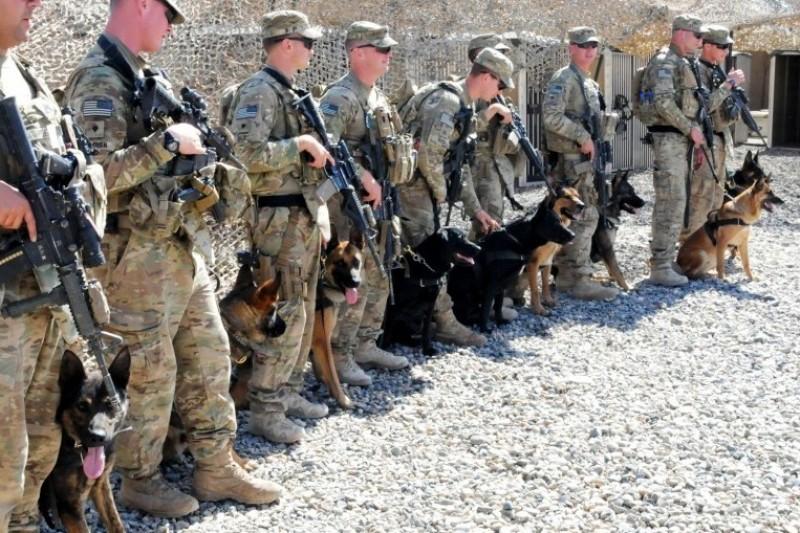 Army Dog teams | K9 PRIDE